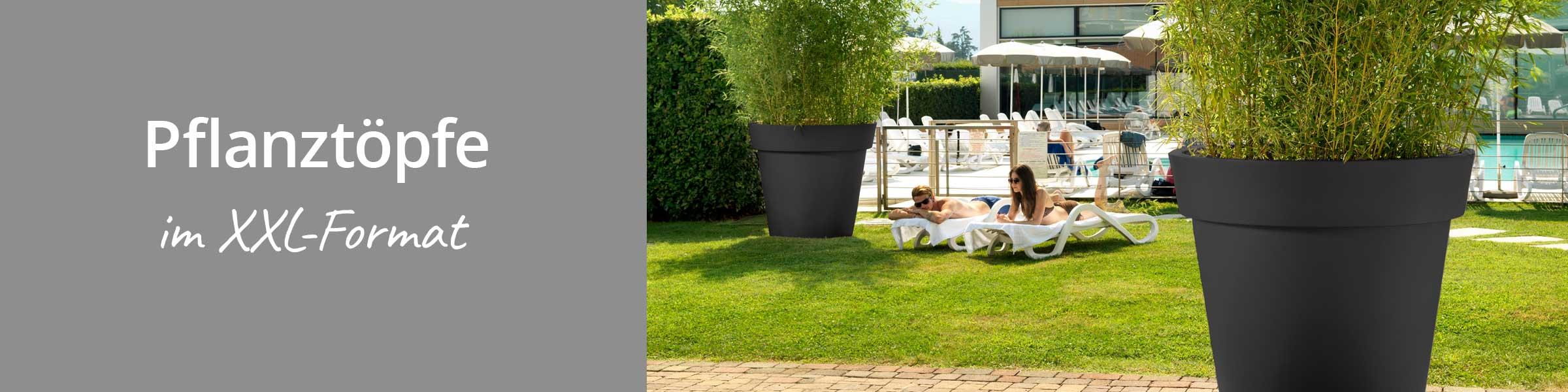 pflanzgef e bert pfe top auswahl gleich bestellen dehner. Black Bedroom Furniture Sets. Home Design Ideas
