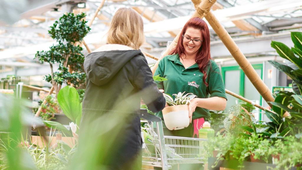 Verkäufer Blumen & Pflanzen Dehner Garten-Center