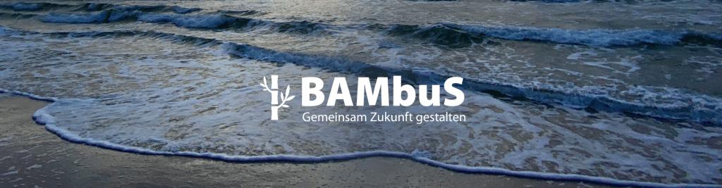 Bambus_Header_Interimsloesung_500px__02