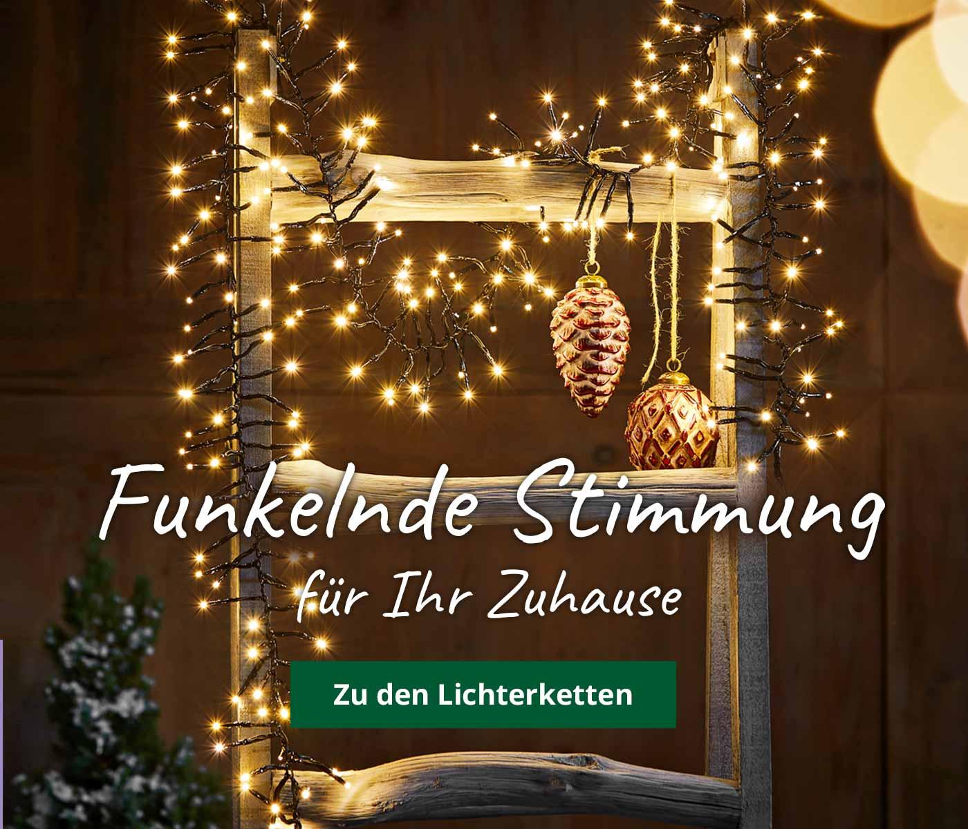 Weihnachtsdeko Jetzt Gunstig Online Kaufen Dehner