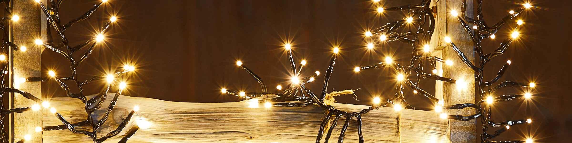 lichterkette für außen – haus und garten schmücken | dehner