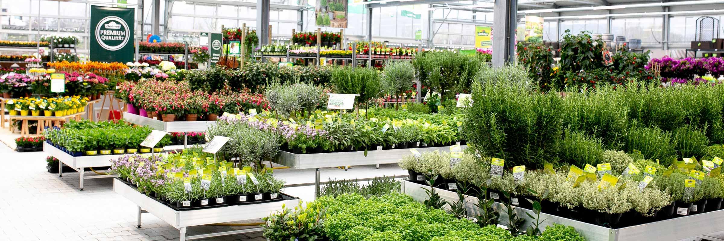 Dehner Garten Center In Hamburg Dehner