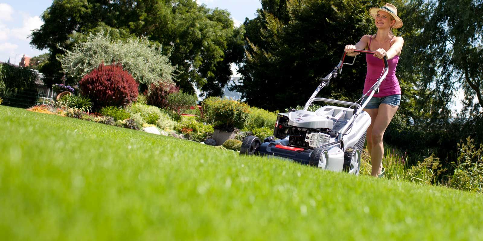 Ratgeber Für Den Perfekten Rasen Dehner