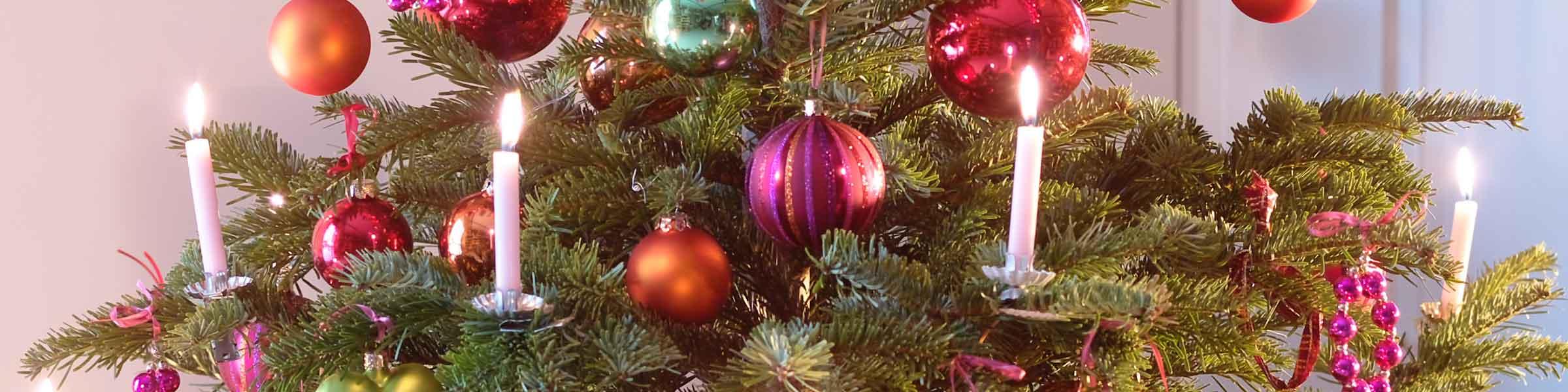 wundersch ne weihnachtsbaumkerzen finden sie jetzt dehner. Black Bedroom Furniture Sets. Home Design Ideas